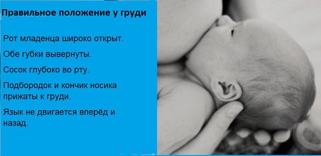 Как правильно прикладывать малыша