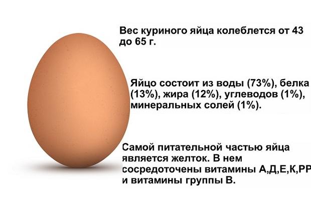 состав куриного яйца