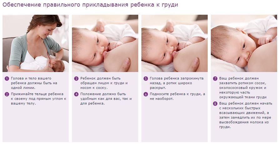 Техника прикладывания малыша
