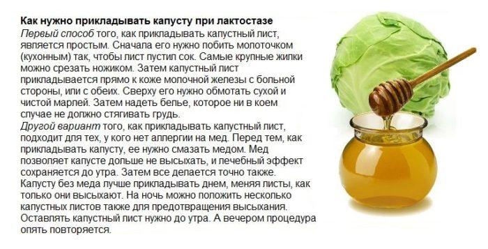 лечение лактостаза капустой