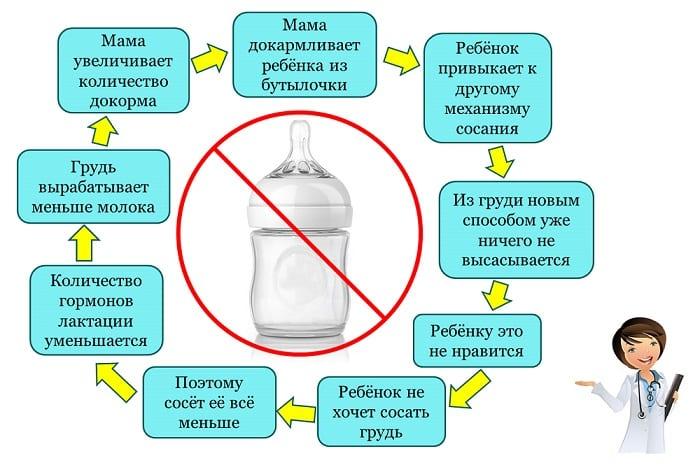 докорм и особенности использования бутылочки