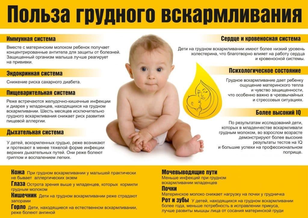 польза ГВ для малыша и мамы