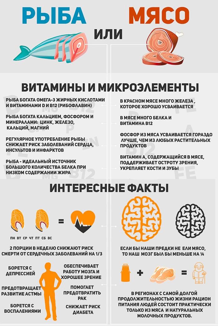 рыба или мясо инфографика