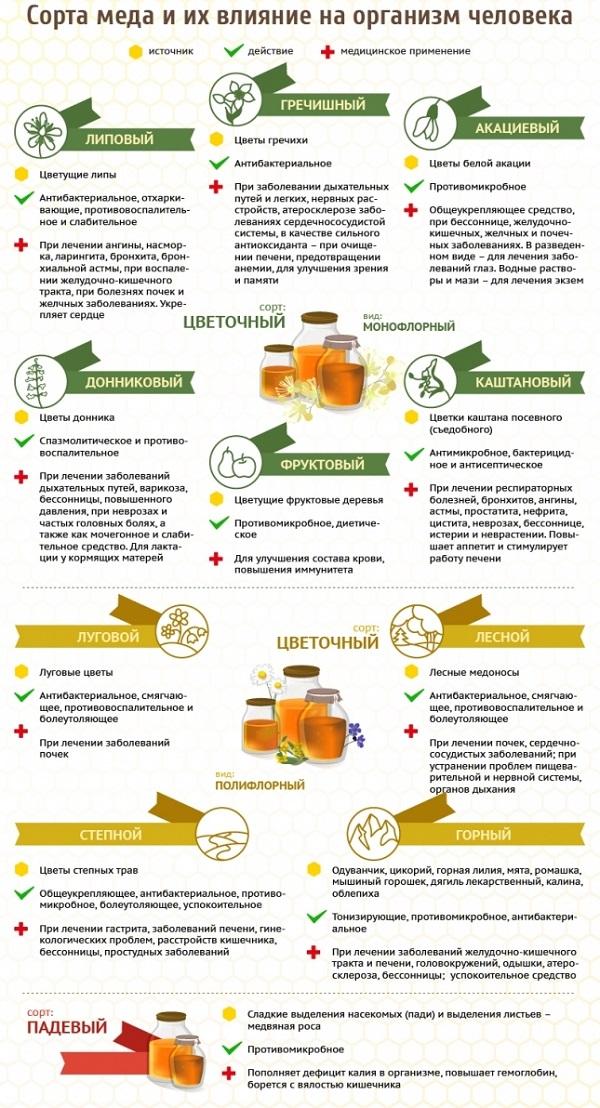 виды меда и его польза