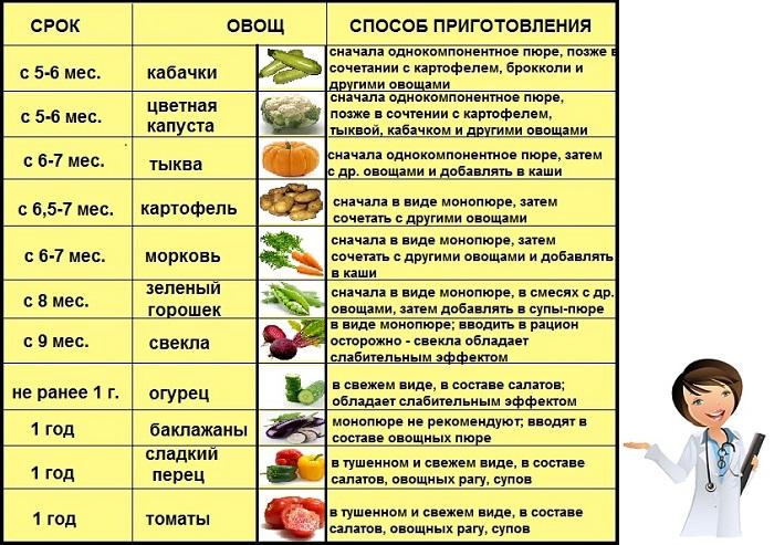 введение прикормаовощи